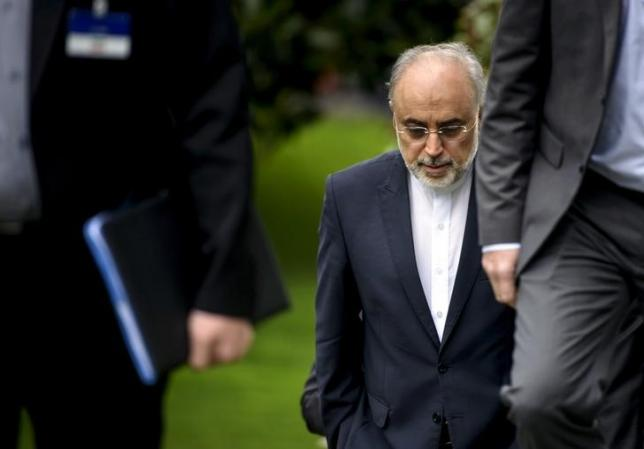Head of the Iranian Atomic Energy Organization Ali Akbar Salehi